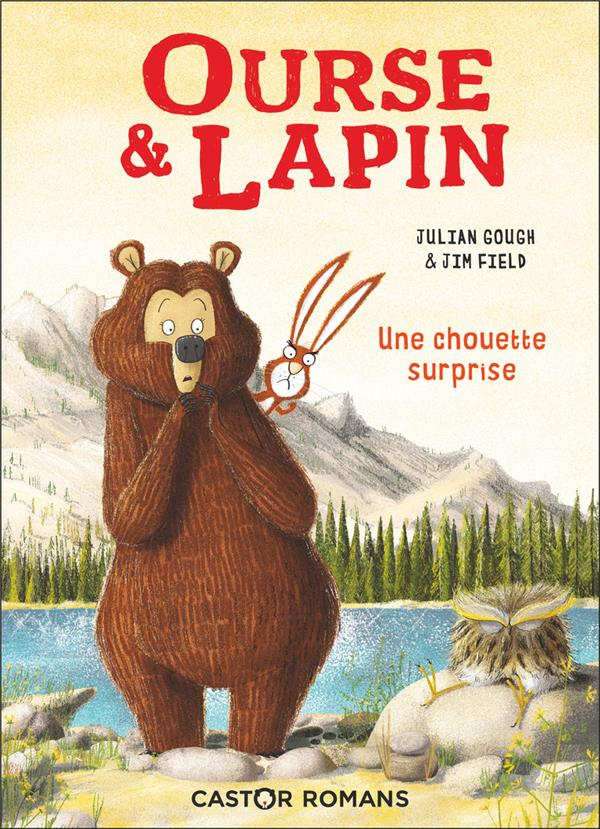 UNE CHOUETTE SURPRISE - OURSE ET LAPIN - T3